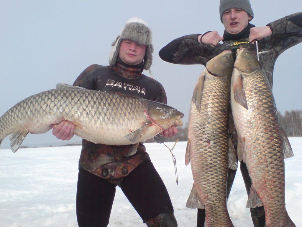 белый амур рыбалка московская