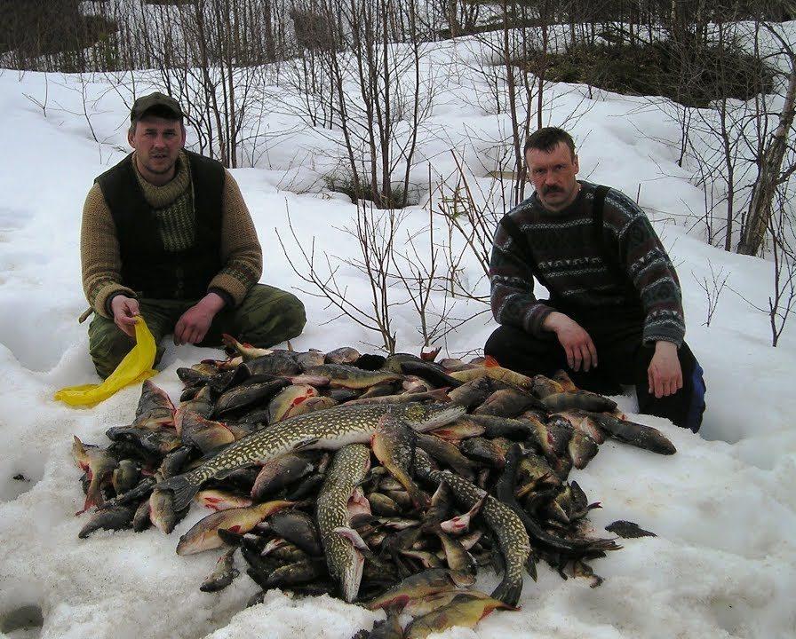 Два рыбака с кучей рыбы