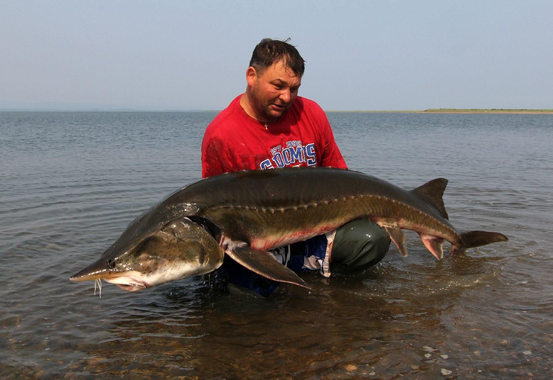 Рыбак с трофейным уловом