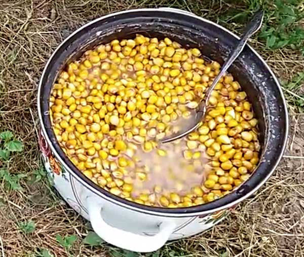 Кастрюля с кукурузой