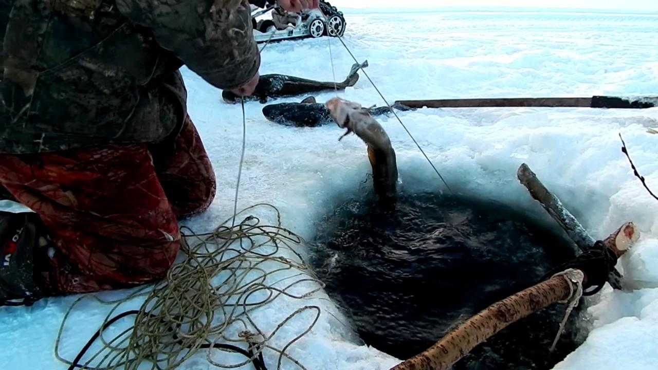 Рыбак у проруби