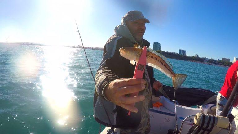 Ловля рыбы с берега в Сукко