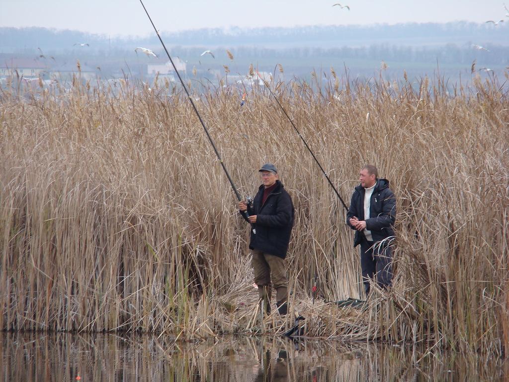 Два рыбака в камышах с удочками
