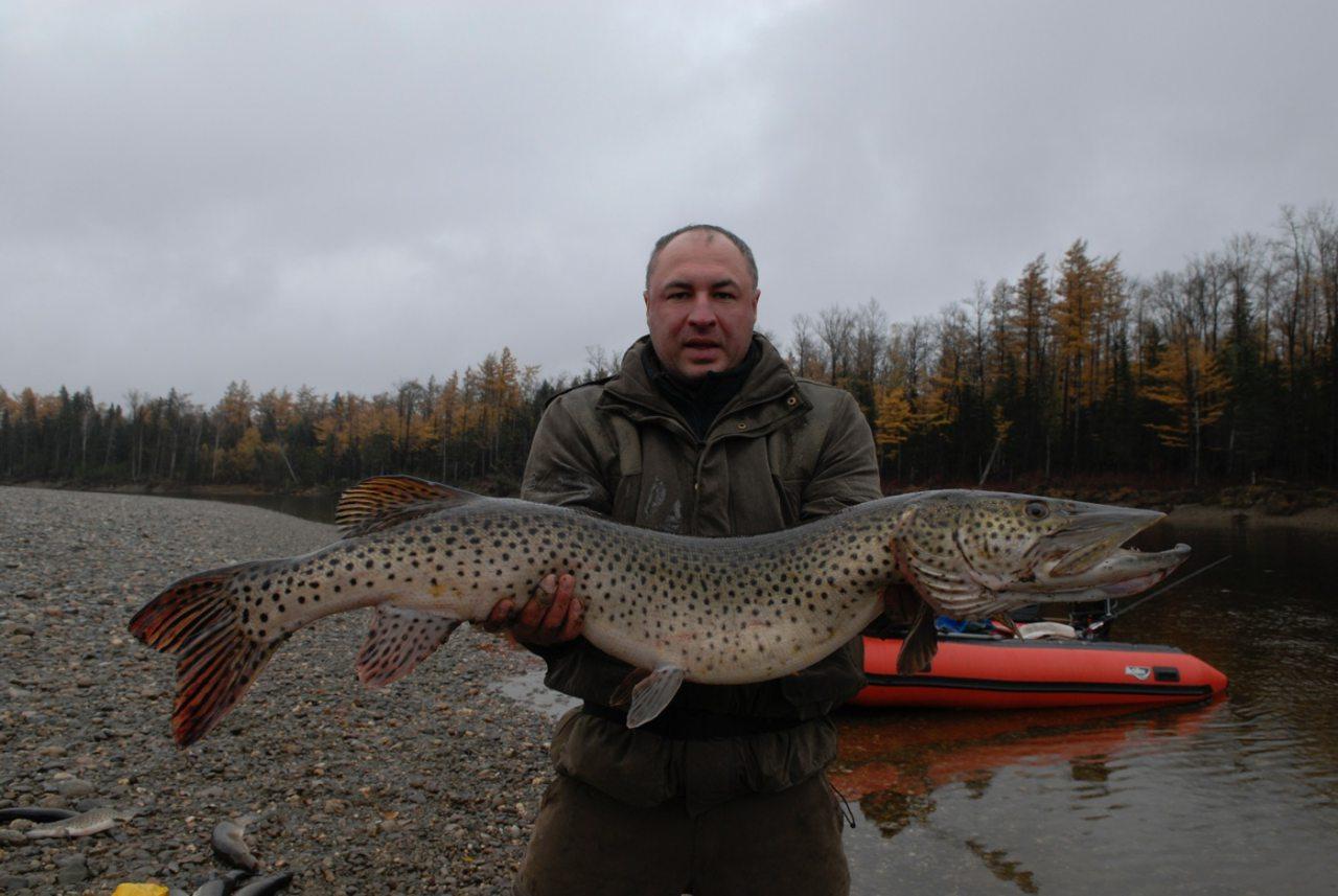 Мужик с огромной рыбиной
