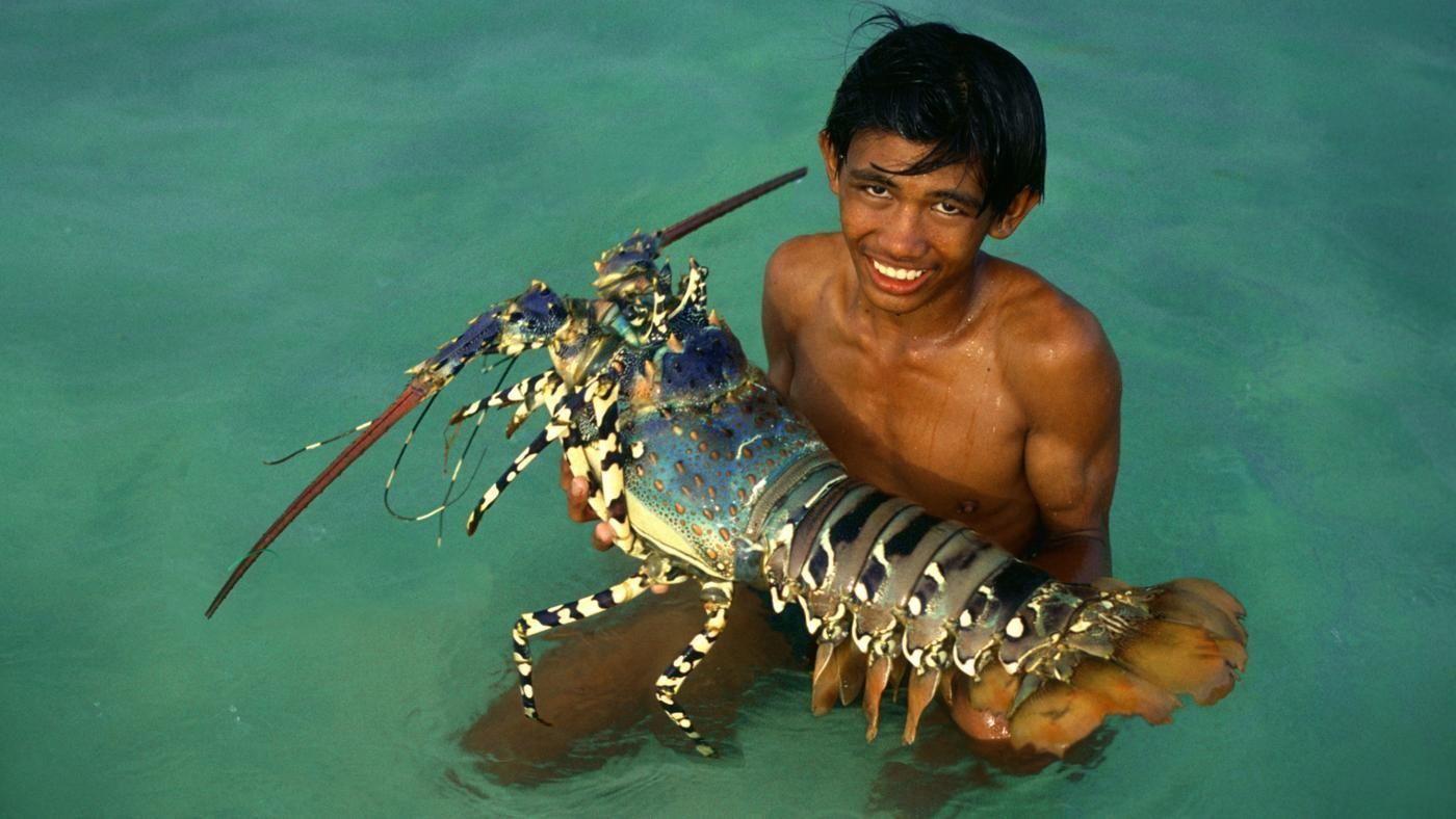 Мальчик с гигантский омаром