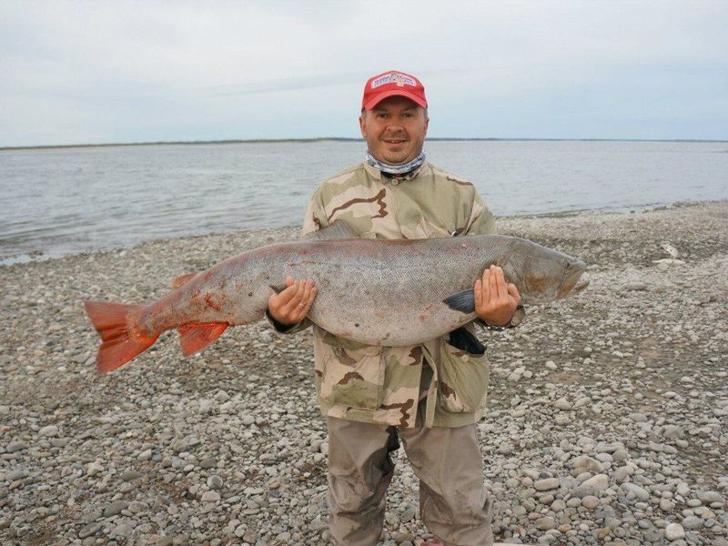 Мужик с крупной рыбой