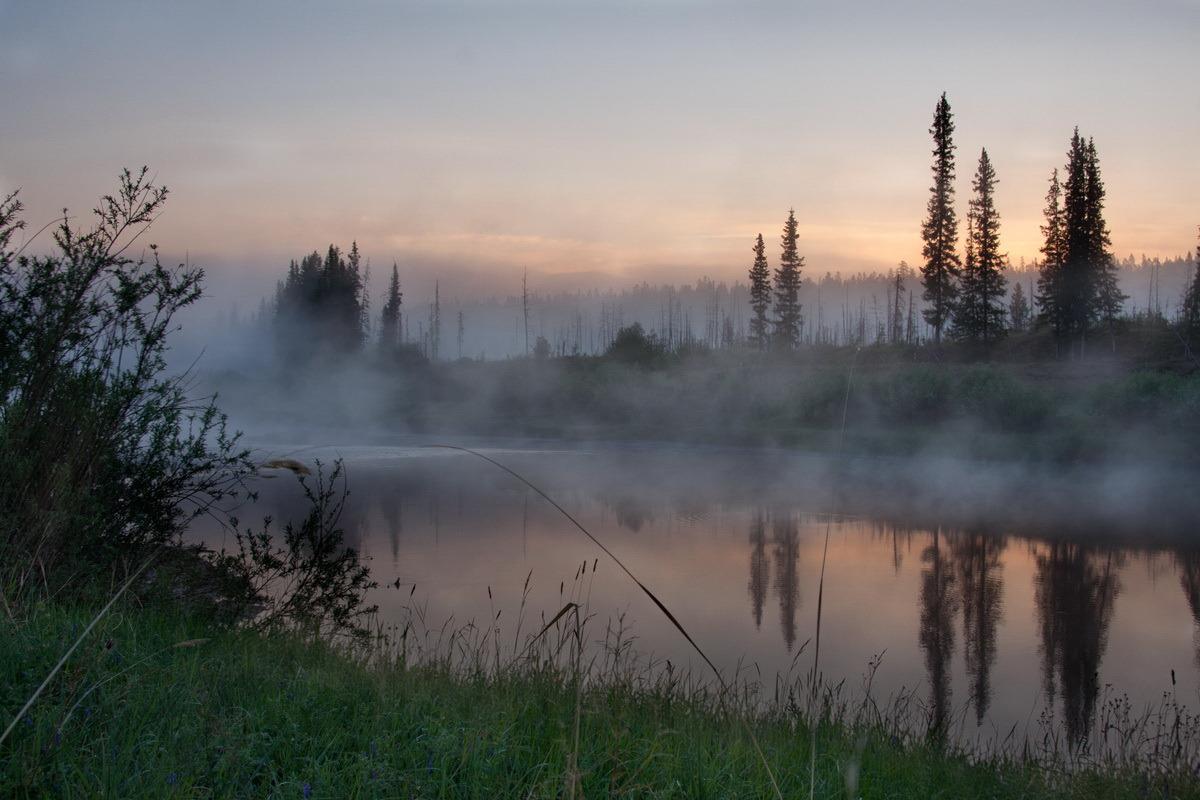 Природа реки Вилюй