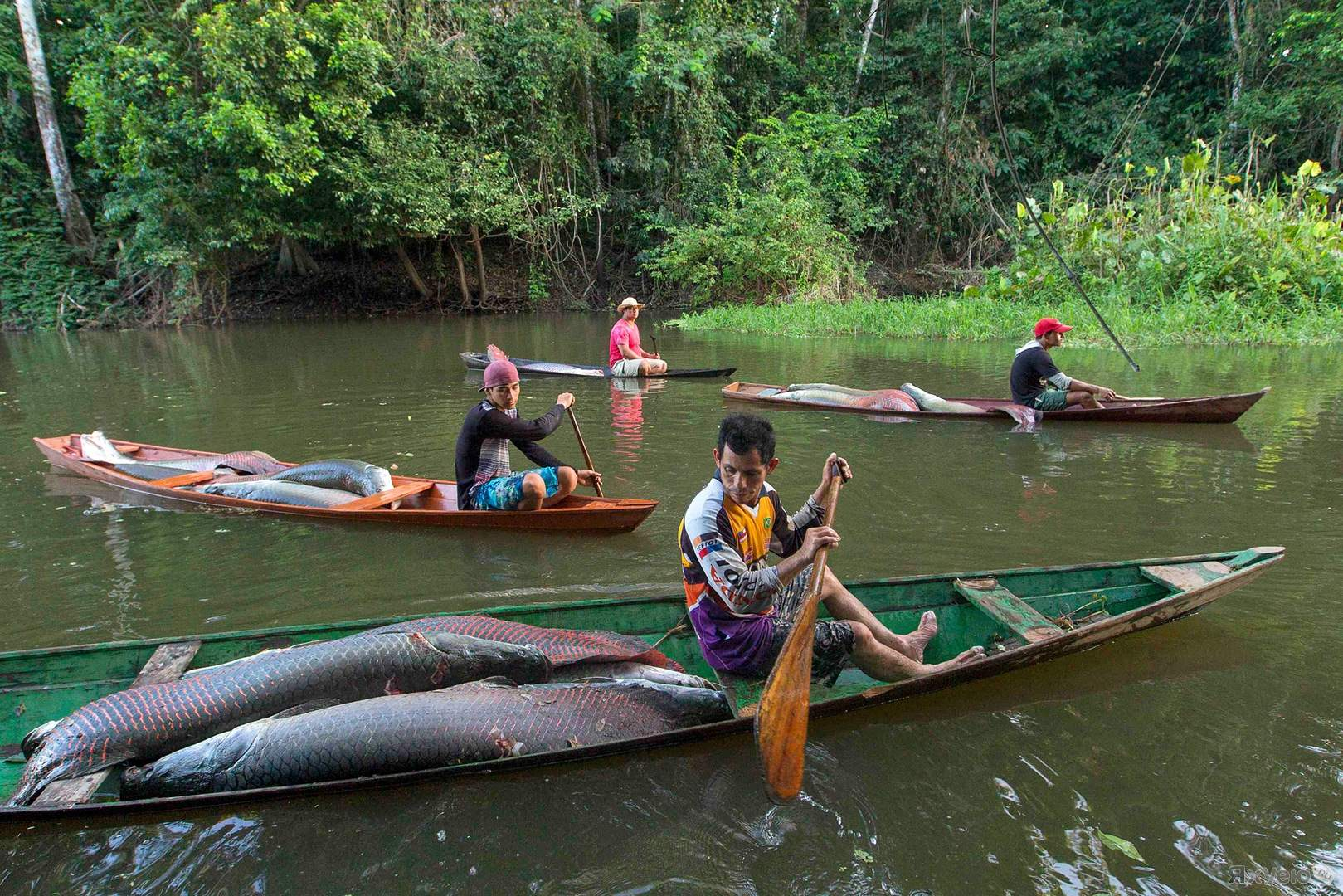 Рыбаки в лодке