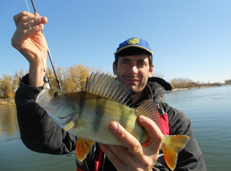 Рыбак с пойманным окунем в руках