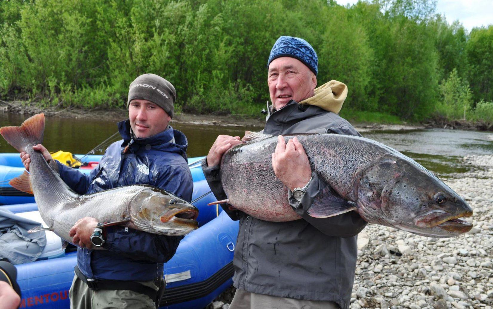 Два рыбака с огромными тайменями