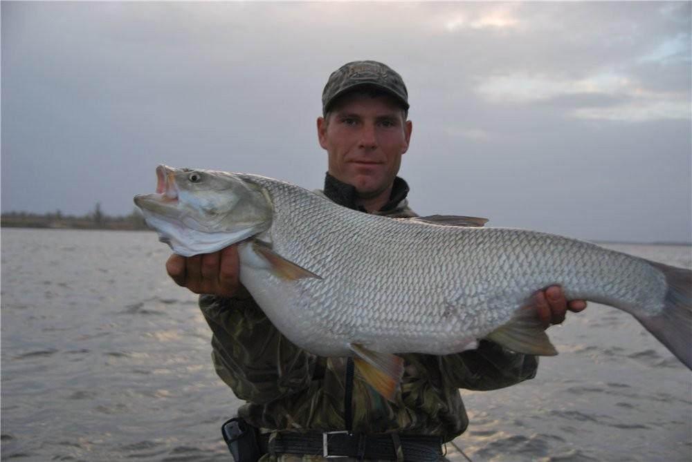 Рыбак с огромной рыбиной в руках