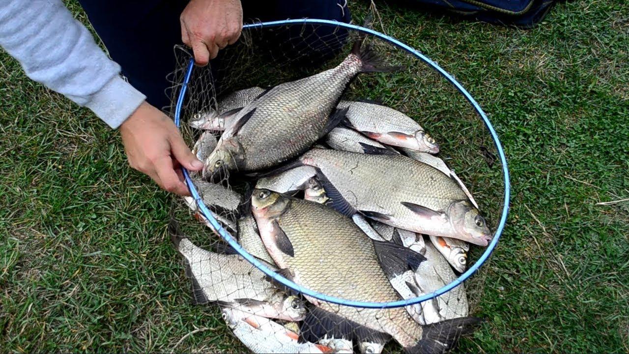 Полный садок с рыбой