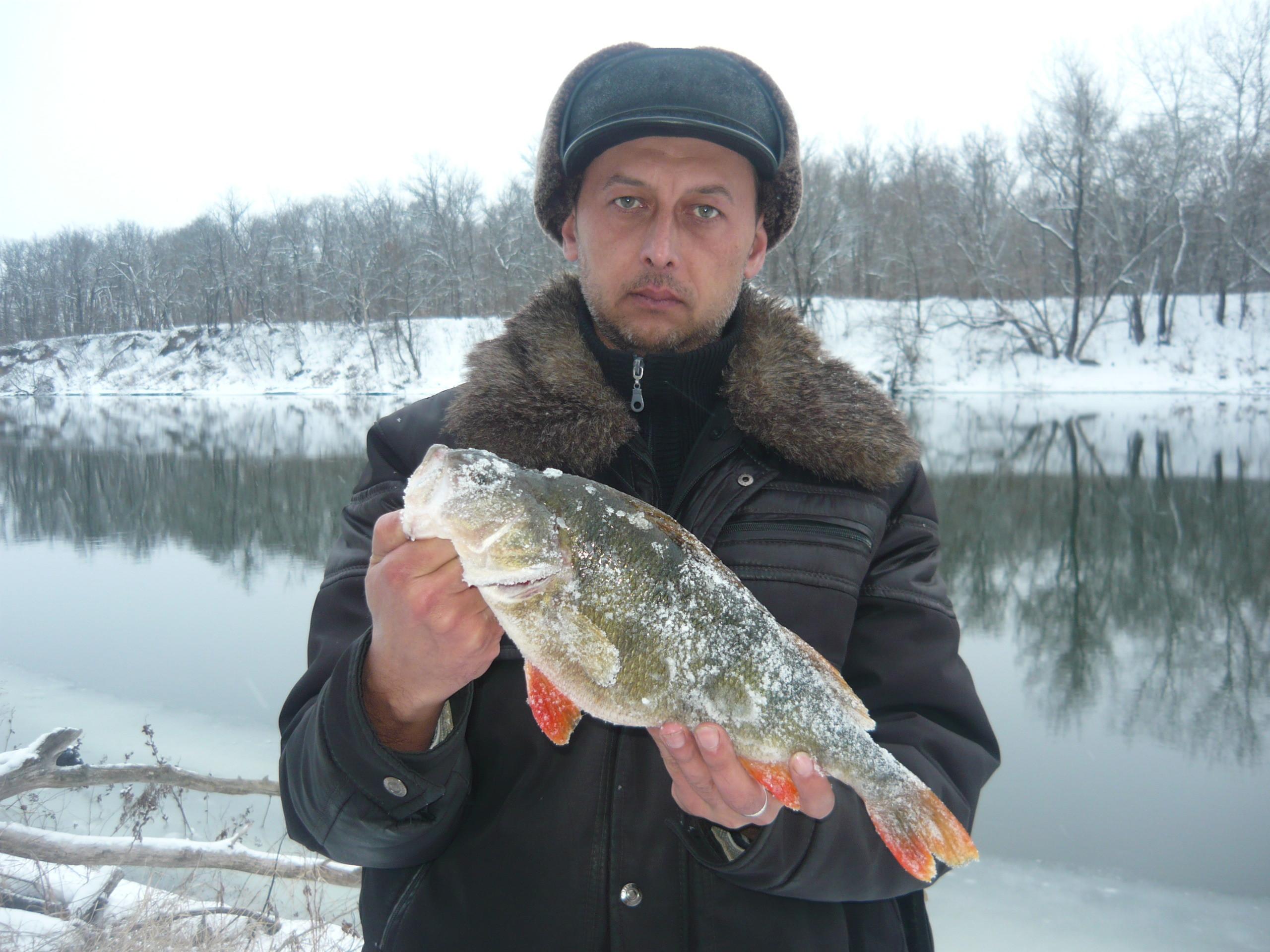 Рыбак с огромным окунем в руках