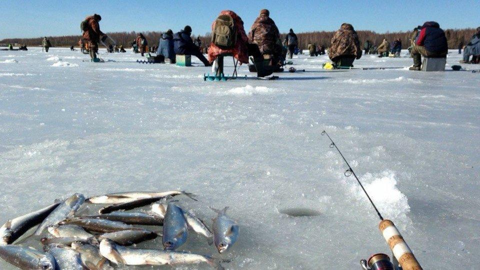 Большое количество рыбаков на льду
