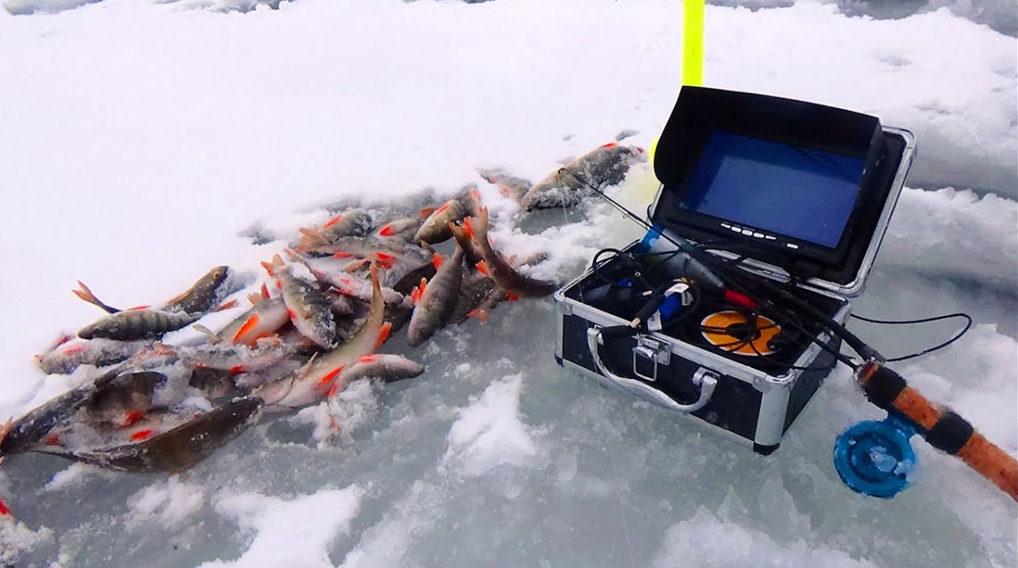 Зимние снаряжения с кучей пойманных окуне